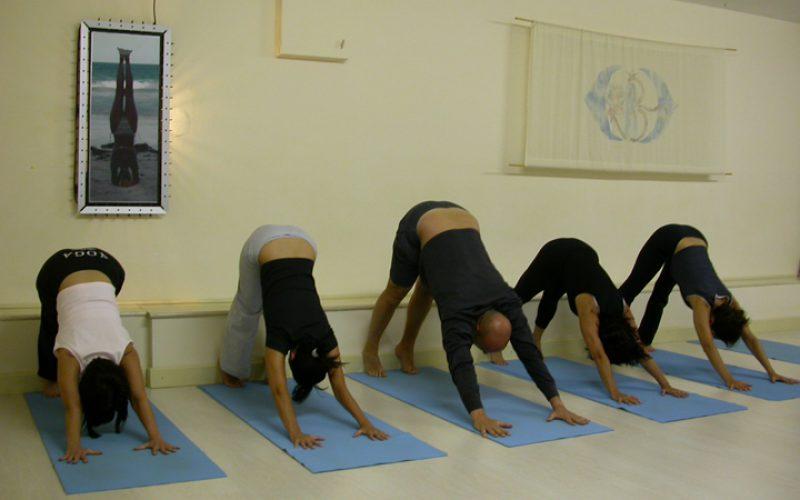Nuovi Stage di Approfondimento Hatha Yoga